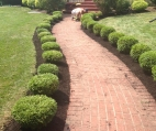 Home Landscaping Design Buffalo NY